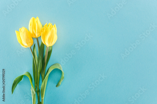 top view of bouquet with yellow spring tulips isolated on blue background