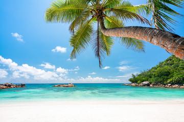 Wakacje na plaży na samotnej wyspie w tropikach
