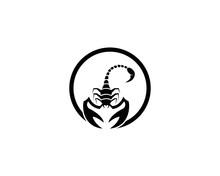 Scorpions Icon Illustration
