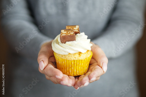 Delicious cupcake with cream and candy in the hands Wallpaper Mural