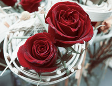 Two Red Decorated Roses