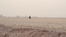 On A Winter Field Rider Rides A Horse