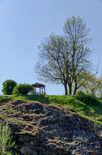 Valokuva  Springtime view with tree and alcove for respite in the glade at top slope, Panc