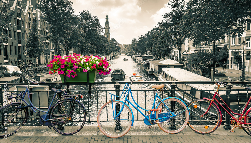 Fototapeta Amsterdam - Black and white photo with colored bicycles