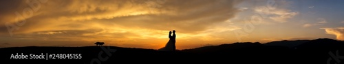 Fotografie, Obraz  Silhouette of young married couple at sunset
