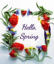Spring Floral Composition From Poppies, Cornflowers, Irises, And Wild Flowers With Green Leaves, Hello Spring Writing  Inside Of Flowering Frame, Flat Lay, Top View, Isolated On White