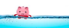 Piggy Bank In Life-ring Floati...