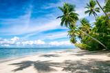 Palm trees casting shadows on a wide remote tropical Brazilian island beach in Bahia Nordeste Brazil