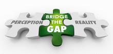 Perception Vs Reality Bridge T...