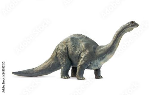 Fototapeta Long necked dinosaur eating plants Brontosaurus in form classic style on white background