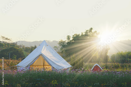 Foto op Canvas Kamperen summer white camping in flowers field in the morning.