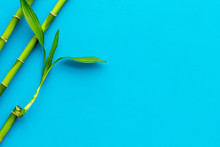 Asian Background. Green Bamboo Branches On Blue Background Top View Copy Space