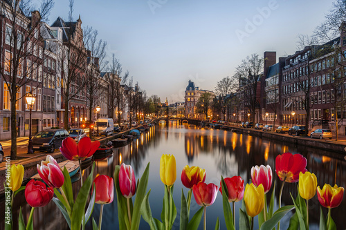 Photo  Evening in Amsterdam with tulips