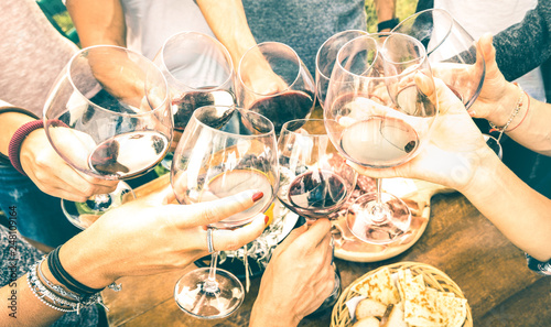 Friend hands toasting red wine while having fun outside cheering with winetasting - Young people enjoying  drinks on harvest time together at farmhouse vineyard countryside - Youth friendship concept - 248109164