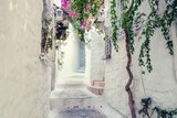 Fototapeta Na drzwi - Beautiful Streets of old Marmaris. Narrow streets with stairs among the houses with white brick, green plants and flowers in the old town of resort of in Turkey