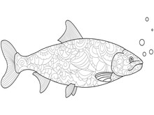 Anti-stress Coloring For Adults And Children. Fish Salmon Black Lines On A White Background. Patterns Of Flowers Raster