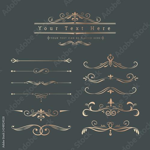 Obraz Vintage ornamental design elements - fototapety do salonu