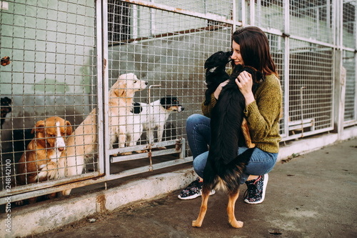 Young woman choosing which dog to adopt from a shelter. Canvas Print
