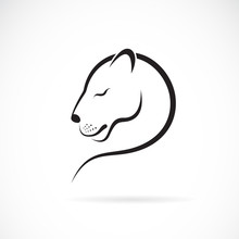 Vector Of Female Lion Design O...