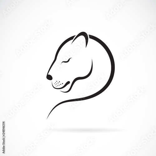 Vector of female lion design on white background Wallpaper Mural