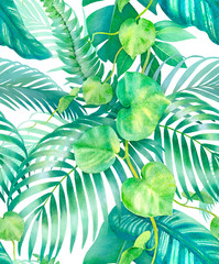 FototapetaWatercolor background with illustrations of tropical flora. Seamless pattern design