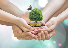 Retirement Planning, Family Financial Investment And Legacy Concept With Father Parent Support Children's Hands Growing Tree With Wealthy Gold Coins
