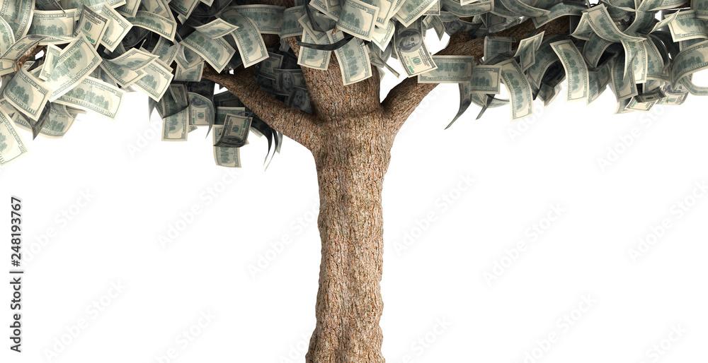 Fototapety, obrazy: dollar tree with hundred dollar bills on white 3d illustration