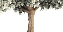 Dollar Tree With Hundred Dolla...