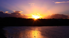 Beautiful Starbust On A Sunset Over The Horizon With A Forest In The Background And Water In The Foreground With Birds. Lake With Seagulls And Swans On The Reflections Of The Setting Sun