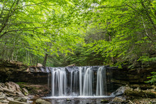 Forest Over Oneida Waterfall In Ricketts Glen State Park Of Pennsylvania