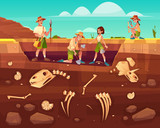 Fototapeta Dinusie - Archaeologists, paleontology scientists working on excavations, digging soil layers with shovel, exploring founded artifacts, studying dinosaurs fossil skeletons bones cartoon vector illustration