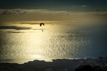 A Silhouette Of Paraglider Over An Evening Sea