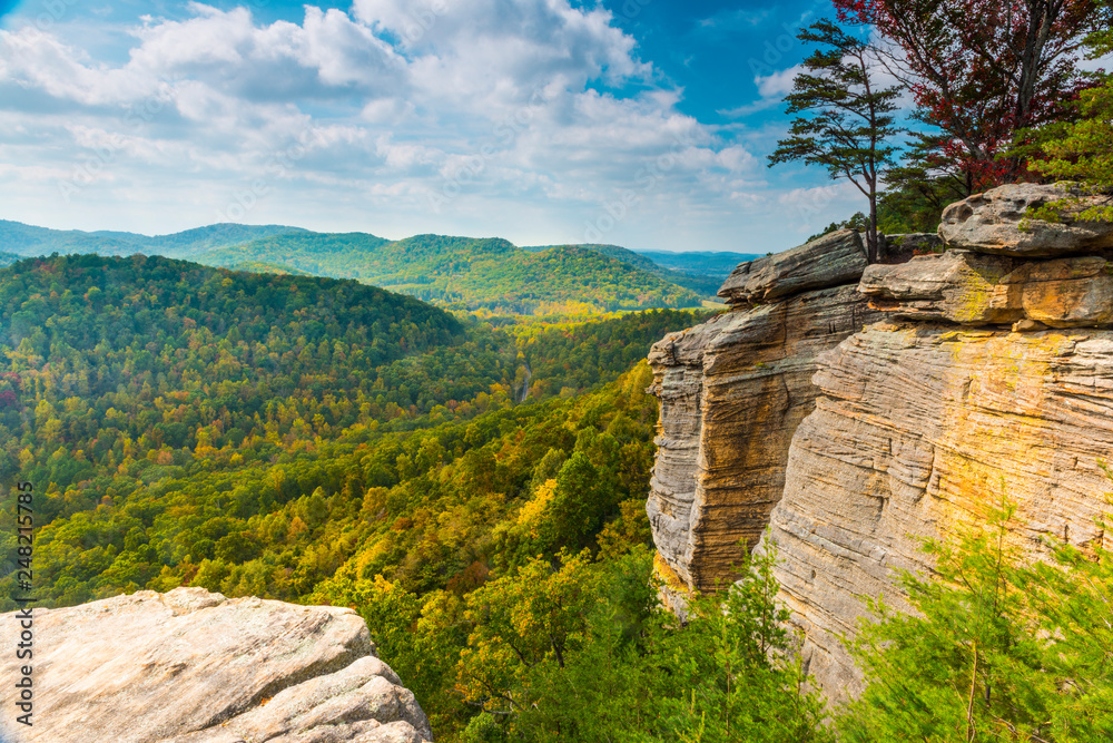 Fototapety, obrazy: East Pinnacle Lookout