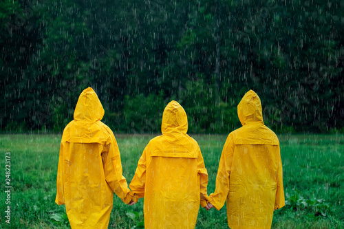 Fotografie, Obraz  Three girls in yellow raincoats holding hands, standing in middle during rainfall in front of deciduous forest