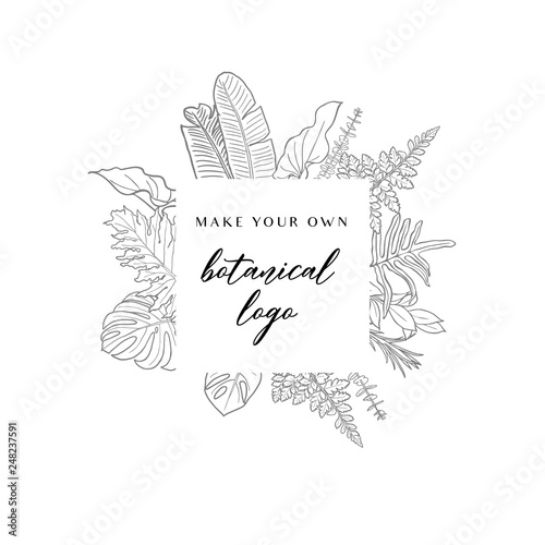Foto  Hand drawn Botanical Plant Illustration