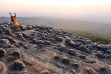 Stone In Lan Hin Pum At Phu Hin Rong Kla Park Phitsanulok Province,Thailand.
