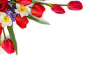 Decoration Of Women's Day Or Mother's Day. Beautiful Red Tulips, Narcissus, Hyacinths And Flowers Muscari On White Background With Space For Text. Top View, Flat Lay