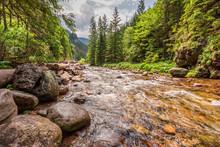 Small Stream And Big Rocks In ...