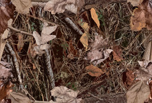 A Woodland Camouflage Pattern For Hunting Purposes