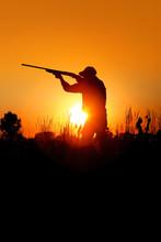 Bird Hunting - Silhouette