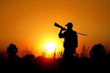 Bird Hunting - Silhouette