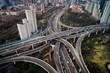 Shanghai Yanan Road overpass bridge