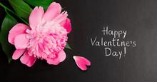 Panoramic Greeting Card Happy Valentine's Day