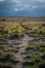 A Hiking Trail Leads Across A Grassy Plain Towards The Hazy Mountains In The Distance, Lit Up By The Late Evening Sun. Drakensberg, South Africa