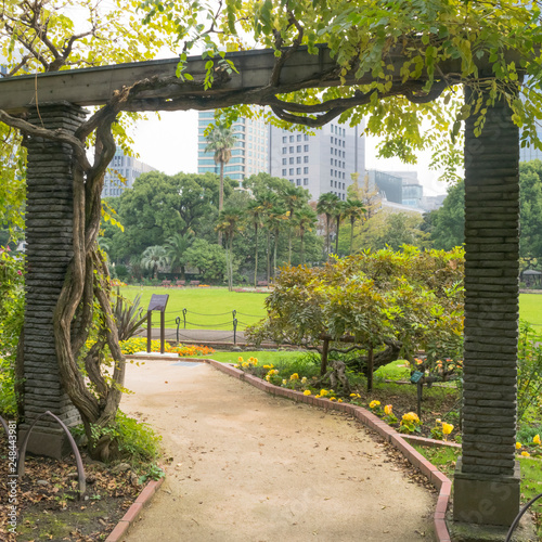 Nature And Garden Green Background With Detail Of Traditional Japanese Garden With Green And Yellow Trees And Pergola Structures In Hibiya Park In Tokyo Japan In November Buy This Stock Photo