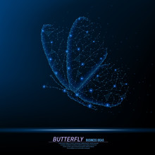 Abstract Polygonal Light Of Closeup Butterfly