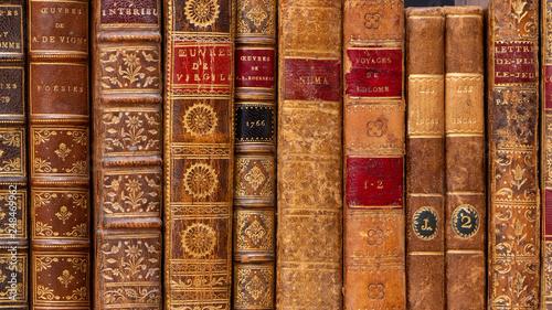 Obraz na plátně  Rangée de livres anciens avec reliures en cuir du 18ème siècle