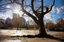 View Of The Prudential Center From Boston Public Garden In Winter