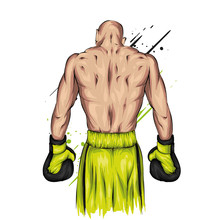 Boxer In Shorts And Gloves. Male Athlete. Vector Illustration For Greeting Card Or Poster. Sport, Fight, Athlete Ready For Battle. Sportsman.