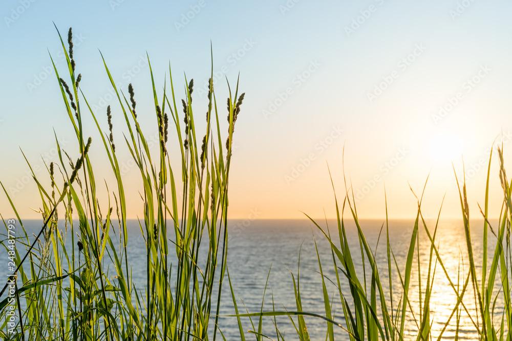 Fototapeta Aussicht auf das Meer